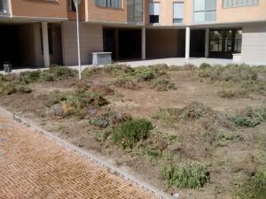 cesped-artificial-madrid-prepara-terreno-1